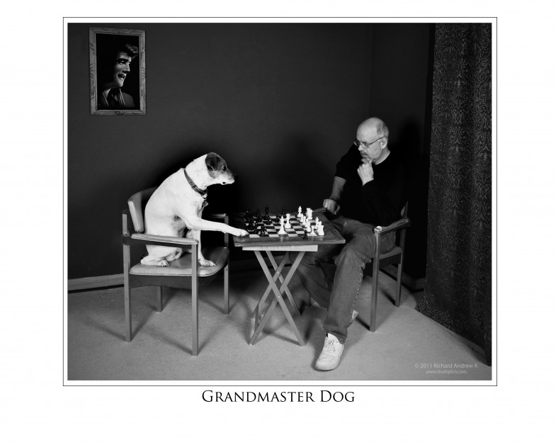 Grandmaster Dog (shotbyrick.com)