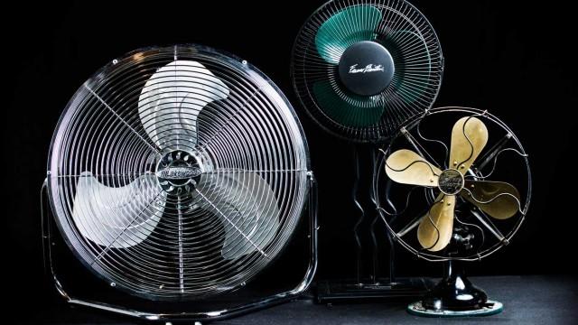 My 3 Fans